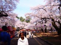 埼玉県営大宮公園