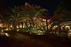 A true resort hotel, spectacular in many ways