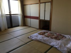 Traditional Japanese accommodation with a modern Japanese style all encased shower capsule.