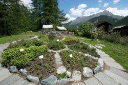 Ricola herb garden