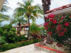 Harbour Club Villas & Marina