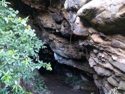 Whatipu Caves Track