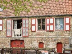 Ark Van Zarren shop