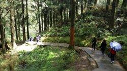 Tashan Trail