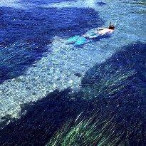 Snorkel TX