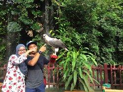 蘭卡威野生動物園