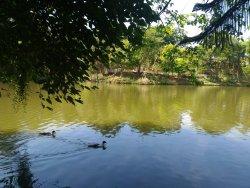 Parque Municipal Novo Horizonte