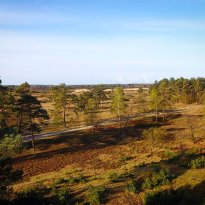 National Park Drents-Friese Wold