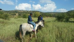 Horse and Trails Unlimited