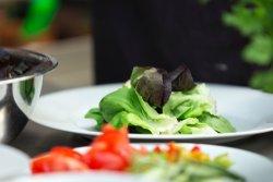 Salat modelo