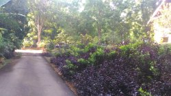 Melaka Botanikal Garden