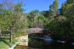 Jardines con su riachuelo y su puente.