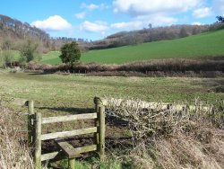 Cotswold Guided Walks Ltd