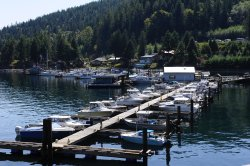 lots of guests moorage available short and long term