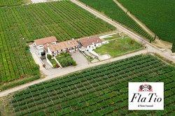 Azienda Agricola FlaTio