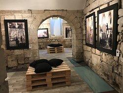 Prima Gallery