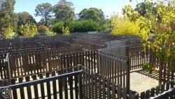 The Granite Belt Maze