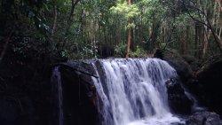 Tranh stream (254711513)