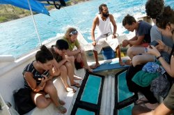 Ocean View Glass Bottom Boat Tours