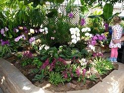 Regina Floral Conservatory