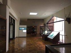 Aikappu Natural History Museum