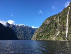 Kiwi Discovery - Milford Sound DayTrip