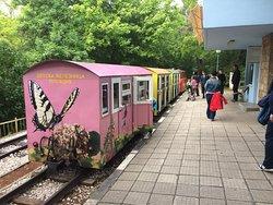 Children's Railway