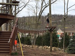 Essex County Treetop Adventure Course