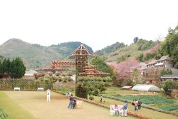 The Royal Agricultural Station Angkhang