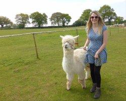 Lucky Tails Alpaca Farm