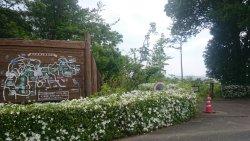 Shizuoka Prefectural Forest Park