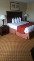 Standard room with a queen bed
