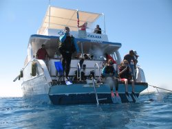 Hurghada diving course OWD