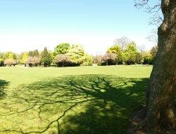 Ward Jackson Park