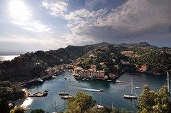 Experience My Portofino