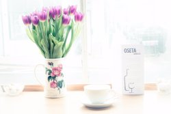 Oseta Cafe