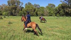 Donana Horse Adventure
