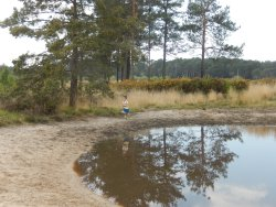 One of the smaller ponds