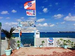 Paradise Snorkel & Scuba