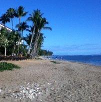 Kamehameha Iki Park