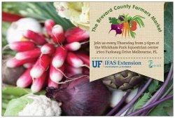 Brevard County Farmer's Market