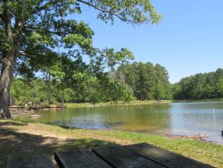 Herb Parsons Lake