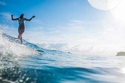 专业冲浪教学中心