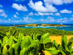 Oahu Circle Tours