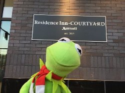 Kermie and Loved our stay here at this new gem of Downtown Phoenix!