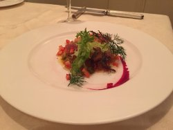 Appetizer - carpaccio salad (salmon, maguro, kampachi) - beautiful presentation