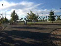 Al Patch Park