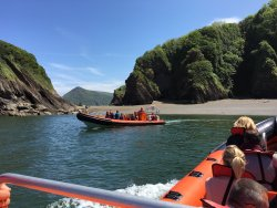 Ilfracombe Sea Safari