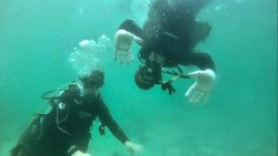 Try Scuba Diving - Key West