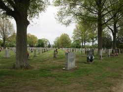 St. Ann Cemetery